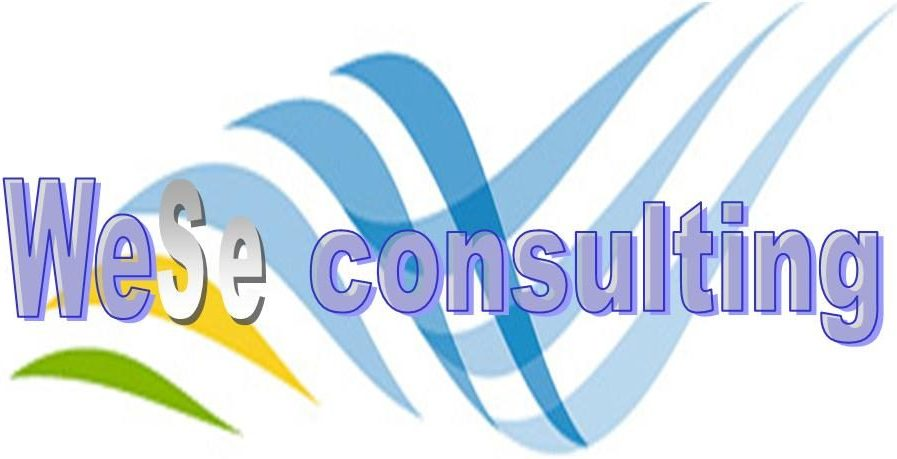 WeSe consulting